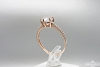 Auksinis žiedas - ZDA019