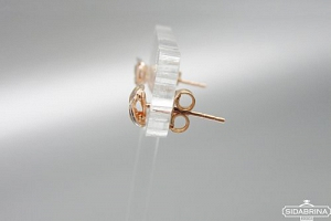 Auksiniai auskarai - AUA117