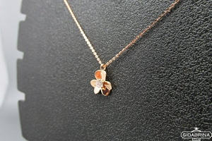 Auksinis kolje - AKO017