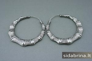 Sidabriniai lankeliai - AUM499