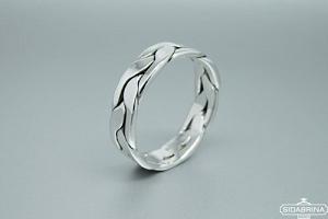 Sidabrinis žiedas - ZDV179