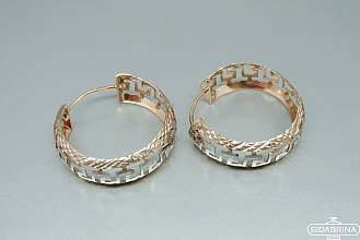 Auksiniai auskarai - AUA072