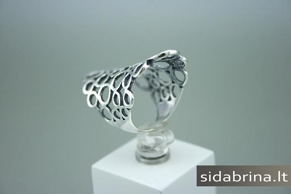 Sidabrinis žiedas - ZDM270